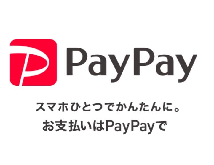 【まるでZOZO!?】ペイペイ「100万円もらえちゃうキャンペーン」